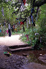 Cloutie tree near the sacred Madron Well in Cornwall, UK